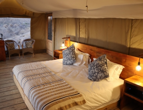Namibia Deals of the Week